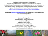 High Quality Nature Photographs - Royalty Free