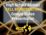 High School Biology - Cell Reproduction Google Slides Presentation