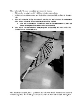 Biology DNA Activity HS-LS1-1 with Templates