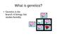 High School Biology Genetics and Solving Punnet Squares