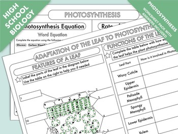 High School Biology Photosynthesis Worksheet Pack Tpt