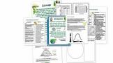 High School Life Science Biology- Ecology and Evolution Bundle!!!