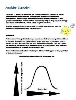 High School Life Science Biology- Evolution