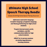 High School Speech Therapy Bundle (Pragmatic, Expressive/Receptive, Fluency)