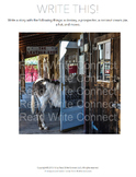High School Writing Prompt, Creative (Donkey in Store)