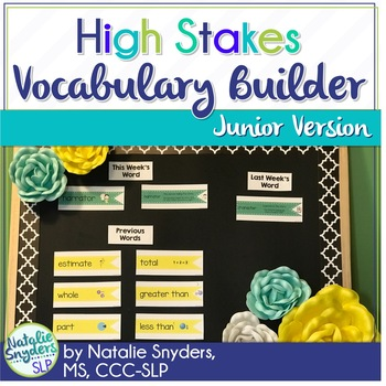 High Stakes Testing: Vocabulary Builder:  1st - 4th Grades