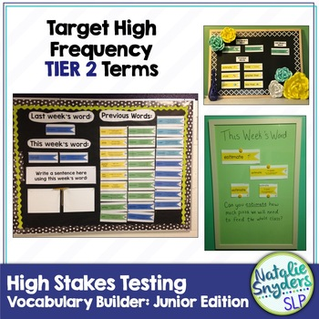 High Stakes Testing: Vocabulary Builder Junior Edition 1st - 4th Grades