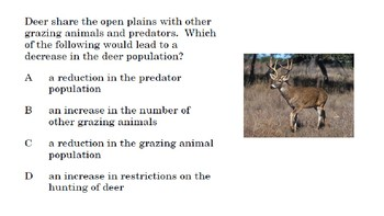Higher Order Thinking Question: Food Webs, Ecosystem interactions