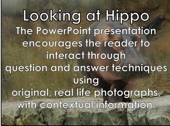 Hippo - Interactive PowerPoint presentation