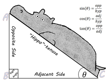 Hippo Trigonometry