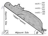 Hippo Trigonometry