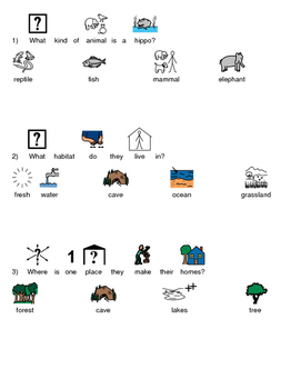 Hippopotamus Hippo Picture supported text article questions facts info