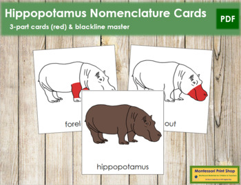 Hippopotamus Nomenclature Cards - Red