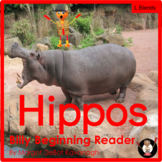 Hippos Consonant L Blends Decodable Book for Guided Reading