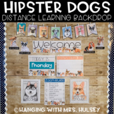 Hipster Dogs Distance Learning Backdrop Décor