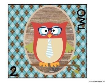 Hipster Owls Decor Bundle