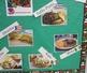 Hispanic Food Labels