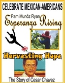 HISPANIC LITERATURE!  ESPERANZA RISING!  HARVESTING HOPE!  ANY SMALL GOODNESS!