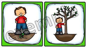 Histoire séquentielle: arbre (garçon)