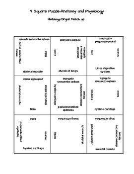 Histology 9 Square Matching Puzzle