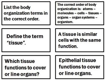 Histology Tissues Flashcards