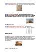 Historical Timeline Activity - World History - FUN!!