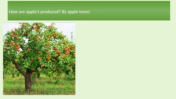 History of Apples! PowerPoint