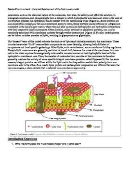 History of Cell Membrane Modeling - IB-SL and HL Biology 2016 curriculum