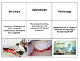 12 Vocabulary Activity History of Forensics