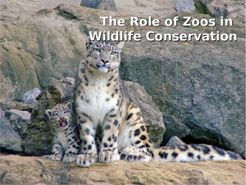 History of Zoos