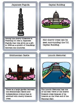 History of the Cherry Blossom Tree in the U.S.