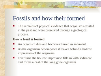 History of the Earth - Evidence of the Past