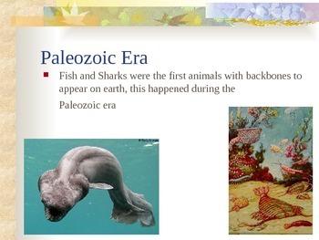 History of the Earth - Paleozoic Era