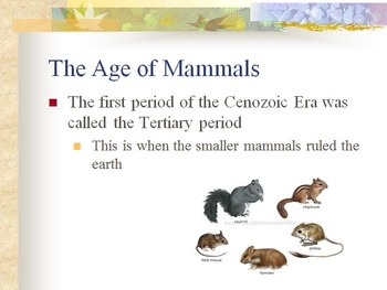 History of the Earth Unit