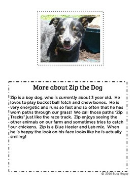 Hobby Farm Stories: Book 2: Zip the Dog- SMART Board and Writing Activity Set