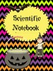 """Hocus Pocus...Halloween """"Witchy""""  Activities for a FUN FILLED Day"""