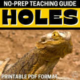 Holes Literature Guide Study - Resources, Activities, Chapter Questions, Tests