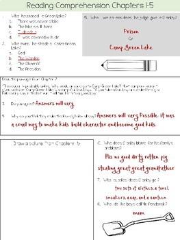 Holes Novel Study!