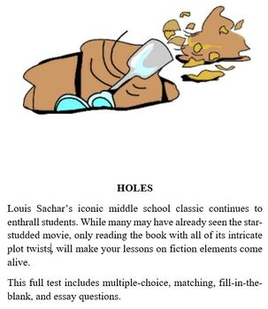 Holes Test - Complete Test on Novel Holes by Louis Sachar