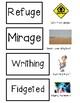 Holes Vocabulary Cards