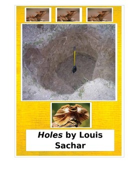Holes by Louis Sachar Tests and Activities aligned with Common Core