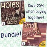 Holes and Small Steps Novel Study Unit Bundle