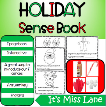Holiday Book (Senses)
