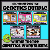 Winter Genetics Worksheets - Snowman Genetics Bundle