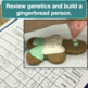 Holiday Genetics Project: Snowman family and Edible Gingerbread Man