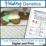 Christmas Science Genetics Project: Snowman family and Edi