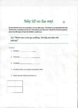 Holiday Genetics Worksheets