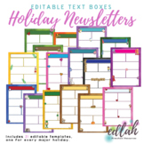 Holiday Newsletter Template Mega Pack for WORD_Generation 1