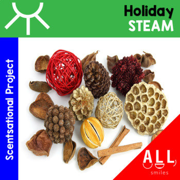 STEAM Challenge - Sights and Smells Holiday Book