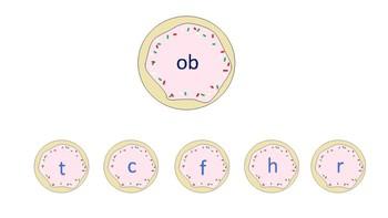 Holiday Sugar Cookie CVC/CCVC worksheets